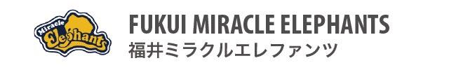 福井ミラクルエレファンツ